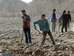 Planting trees (rudenoon) Tags: sony amdo tibetan  dscf828 qinghai  guideschool tibetanwomen guidecounty  jimgourley