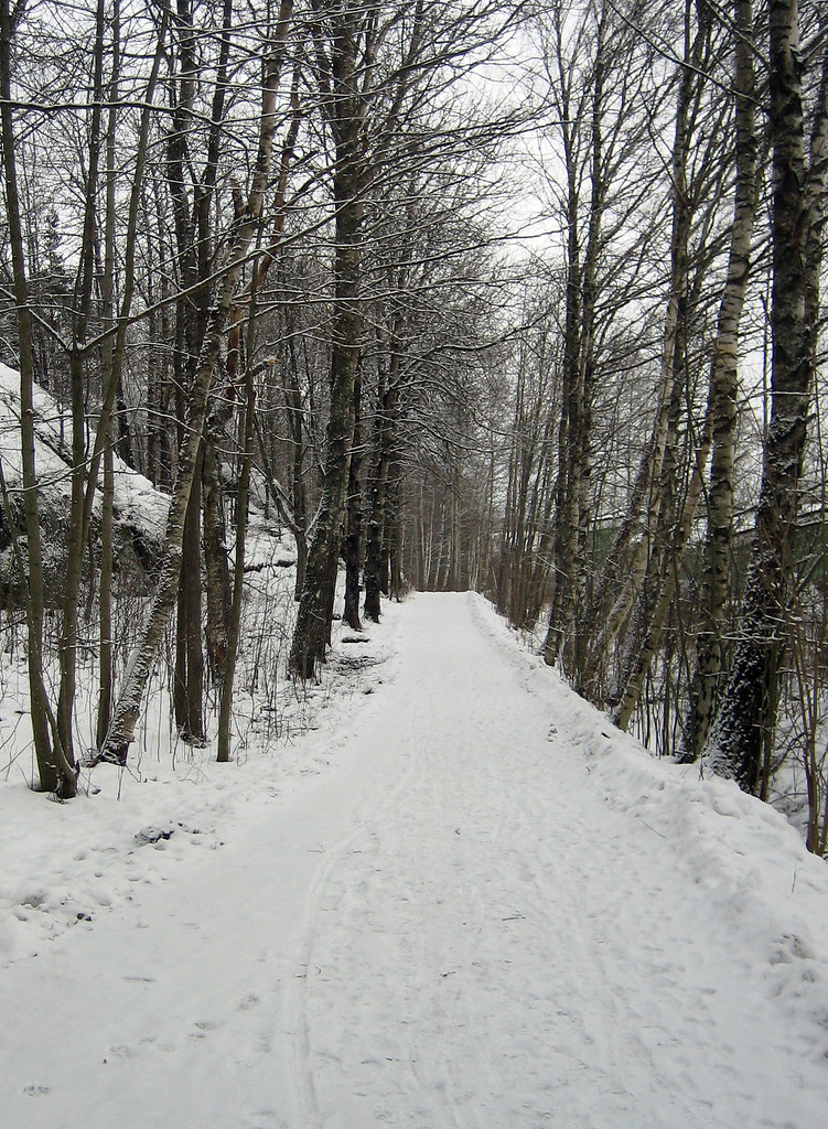The Path (February 6th)