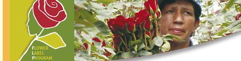 FlowerLabelProgram
