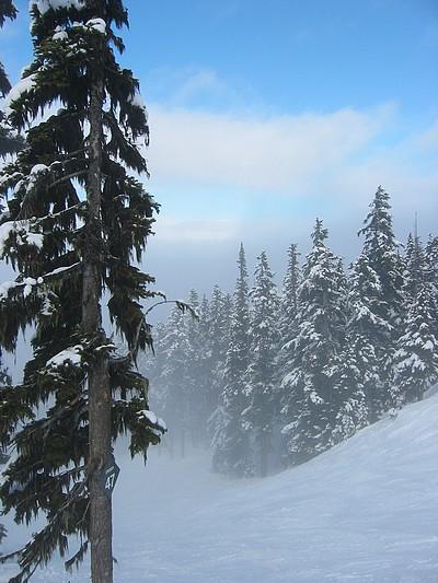 mist and blue sky