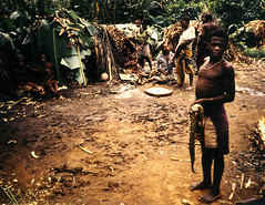 Aug 91 - With a fresh viper in a Bambuti pygmy camp, near Oicha (sp?), North of Beni (Best of Rob) Tags: congo viper drc zaire pygmy pygmies
