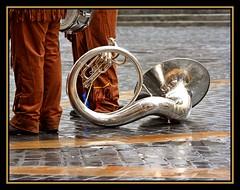 Tuba - by Thorbion