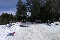 Snow 106 (Jill Huang) Tags: snow sledding boreal 20070217