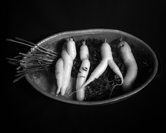 Weird Carrots (efo) Tags: bw stilllife spiral carrot organic humanoid superikonta riverdogfarms