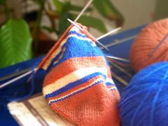 Calcet�n de lana