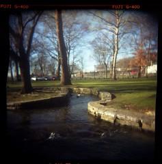 Lititz Springs Park (Jakes_World) Tags: 120 delete10 delete9 delete5 delete2 holga delete6 delete7 ducks delete8 delete3 delete delete4 lititz lititzspringspark purge60