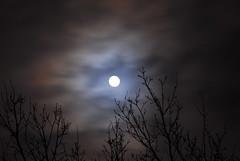 La Luna (hkkbs) Tags: winter moon night clouds ilovenature vinter sweden tripod 100views 400views 300views 200views sverige nikkor 70300mmf456g westcoast laluna måne natten moln fromhome månen wirelessremote västkusten nikond200