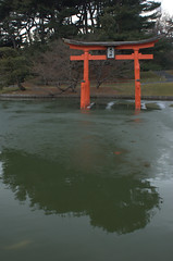 Torii and pond, Japanese Garden, BBG