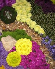 Central Mass Flower Show (Heartlover1717) Tags: centralmassachusettsflowershow centralmaflowershow flowershow flowers stones moss cream yellow magenta blue violet green purple