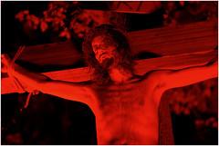 The Law of Sanctimony