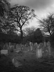 Flaybrick cemetary grave stones (jimmedia) Tags: history cemetery grave graveyard gardens moody stones headstone cemetary birkenhead ornate wirral flaybrick
