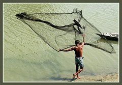 A search for Silvery Dream. [..Sirajganj, Bangladesh..] (Catch the dream) Tags: net topf25 water fisherman village action bongo bengal soe bangladesh throw bangla bengali bangladeshi bangali abigfave superaplus aplusphoto flickrplatinum superbmasterpiece catchthedream gettyimagesbangladeshq2