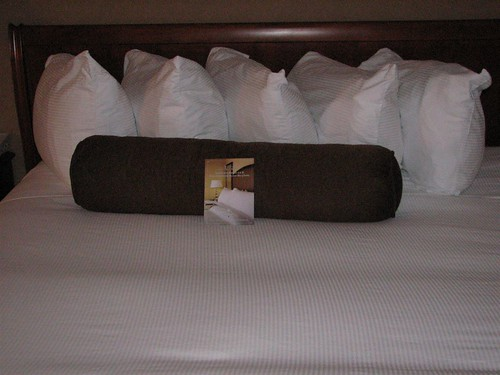 hiltonian pillows