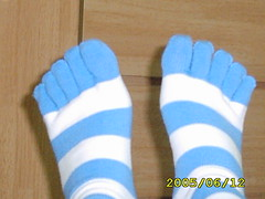 Toe Socks (miche) Tags: