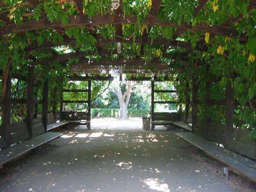 gardens to visit fullerton arboretum