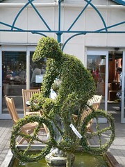 Plantcycle (tarotastic) Tags: burford garden centre bicycle cyclist hedge