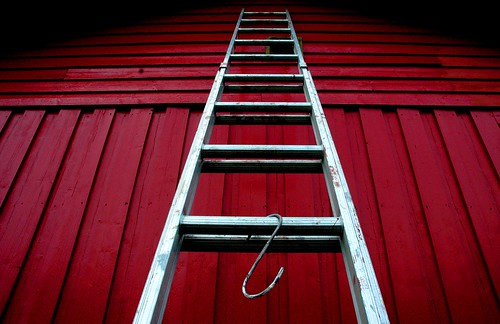 ladder to ?