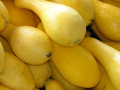 Yellow Squash (by Old Shoe Woman)