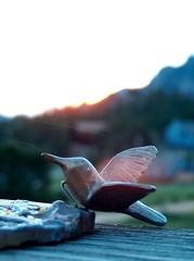 solstice sunrise (Princess Valium) Tags: dilo21jun summersolstice morning sunrise sundial brass hummingbird spidersilk mountains