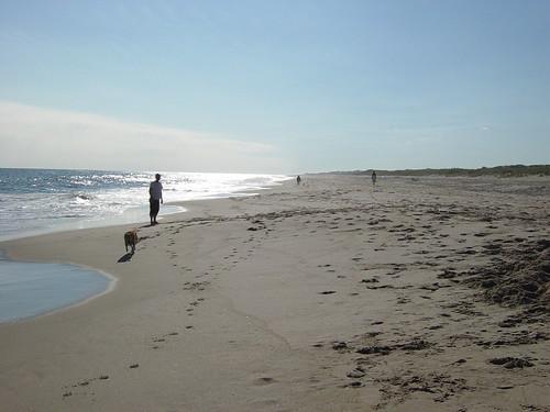 westhampton beach ny new