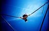julia on bungee trampoline #5 (lomokev) Tags: blue sky fun lomo lca xpro lomography crossprocessed xprocess brighton julia action trampoline lomolca bungee agfa jessops100asaslidefilm agfaprecisa lomograph agfaprecisa100 juey cruzando precisa replaced jessopsslidefilm flickr:user=juey published:by=thecloud use:on=moo file:name=bgen1926hi roll:name=bgen19