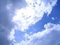 some sunshine / 梅雨の晴れ間
