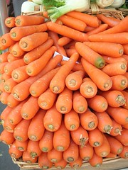 carrots - lots of carrots