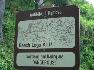 Beach Logs Kill!