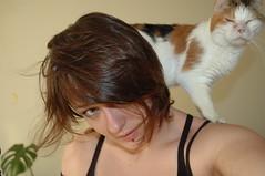 parrot? (Vina the Great) Tags: portrait cat self topv999 pussy mischievous vina minipoes pussyonyourback
