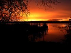 Sunrise on Wiltsie lake (Padrone) Tags: lake ontario beautiful sunrise explore interestingness83 i500 wiltsie