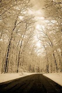 Snow | Road