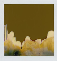 beauteous misfire (flybutter) Tags: abstract green film polaroid 600 onestep flybutter interestingness85 destroidaroid ridiculouslyexpiredfilm