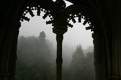 Enchanted Forest (acastellano) Tags: mist portugal window topf25 topv111 fog forest hotel topf50 topv555 topv333 europe topv999 arches palace explore topv777 bussaco interestingness495 gi2 lpwindows
