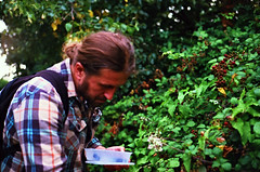(The Integer Club) Tags: film 35mm yashicaelectro35gt 2016 london uk foraging berries berrypicking summer brambles blackberries