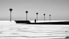 Marrakech #12 (Alessio Centamori PH) Tags: silhouette reportage casablanca alessiocentamori 50mm black white