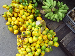 Chontaduros (ambigel) Tags: rain fruit forest colombia selva fruta jungle tropical afrodisiaco proyectocolombia