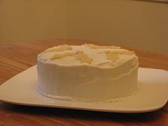 Christmas cake with marzipan (vic9000) Tags: christmas cake marzipan