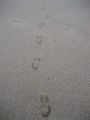 My footstep