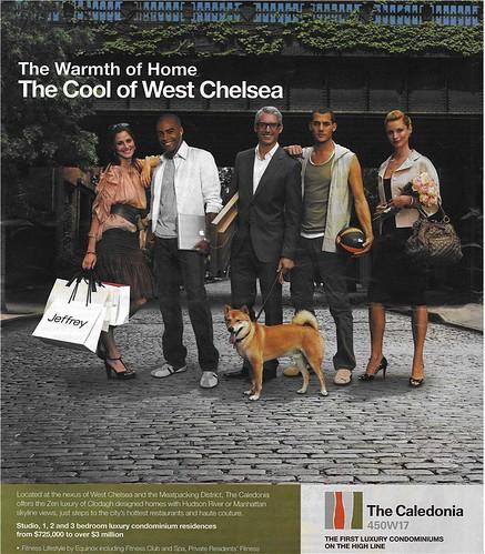 Caledonia Advertisement