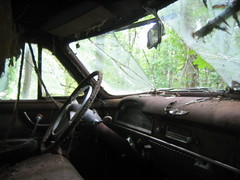 car wreck in the woods - interior without flash (MasterGeorge) Tags: trees urban abandoned car forest woods interior wreck exploration