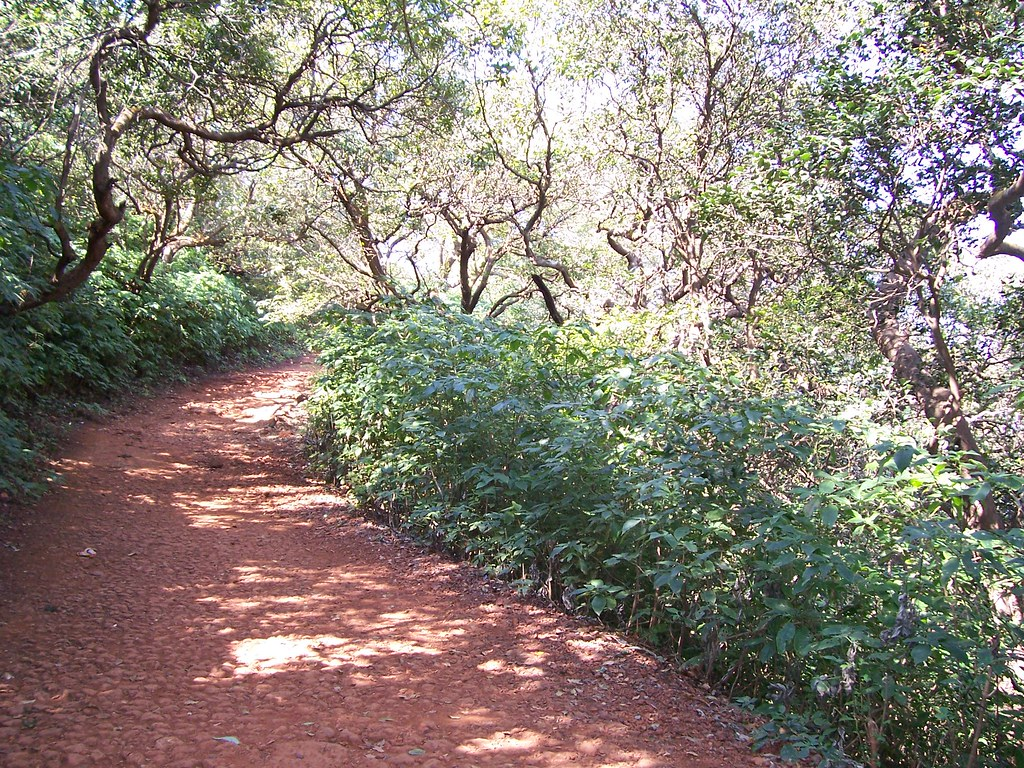 Road in Matheran
