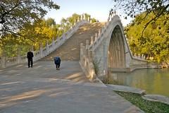 bridge - by yewenyi