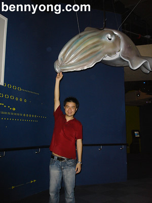 Giant Squid @ Aquaria KLCC