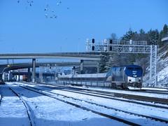Amtrak 164 South by Bailey (Brian Bundridge aka Macster) Tags: amtrak argo talgo amtrakcascades seattletrain