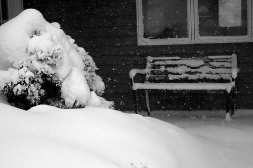 blizzard 003 copy
