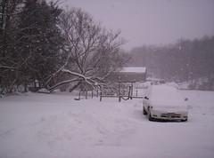 Feb 8 2007 snow