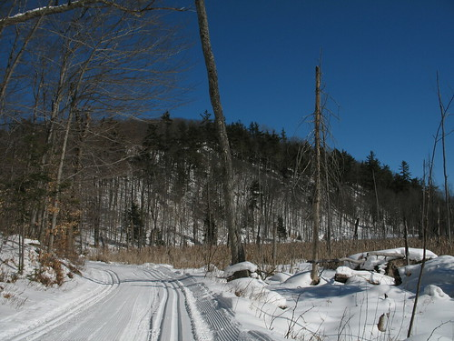 Taylor Lake trail, Gatineau Park