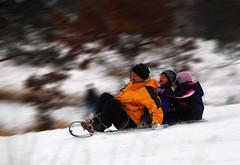 Don't Worry, Kids, Daddy will Drive... (St Paul Paul) Tags: family winter snow minnesota kids fun sledding twincities saintpaul sled tobogganing toboggan