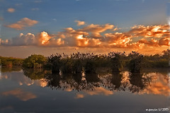Everglades Sunrise - HDR (Michael Pancier Photography) Tags: nature sunrise florida evergladesnationalpark hdr floridaeverglades fineartphotography naturephotography seor naturephotographer anhingatrail flickrsbest floridaphotographer pancier michaelpancier michaelpancierphotography flickrdiamond beautifuleverglades wwwmichaelpancierphotographycom seorcohiba