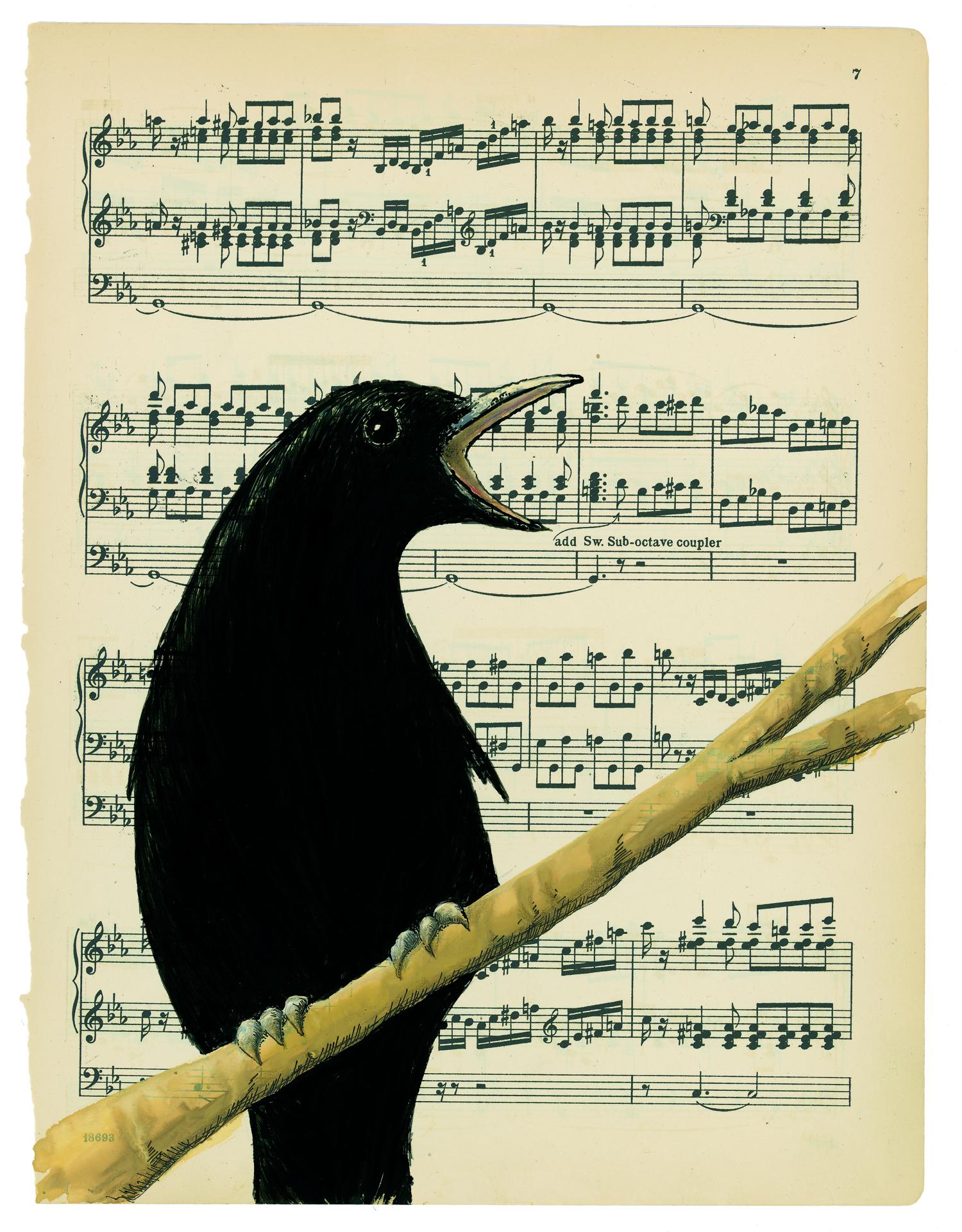 artist: <ARTIST_NAME_META> <ALT_TAGS> Crow song